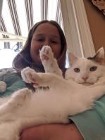 sydney cat